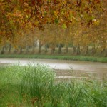 Canal du midi, photo Pierre Parent