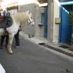 lmdi-randonneurs-cheval